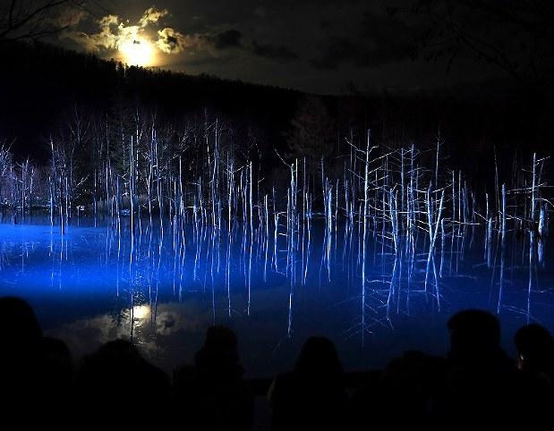 月夜に浮かぶ「青い池」 幻想的な光景に感嘆 北海道・美瑛[写真特集5 ...