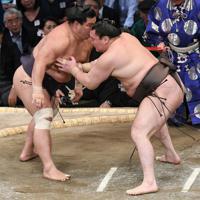 白鵬(右)が妙義龍を突き落としで破る=福岡国際センターで2019年11月14日午後5時54分、矢頭智剛撮影