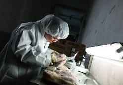 水際の検疫が重要(Bloomberg)
