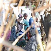 3月に開設された国内避難民キャンプで生活する子供たち。2387世帯、1万2840人が住む。他のキャンプが過密状態のため、このキャンプの空いている土地にさらに収容する可能性があるという=マイドゥグリで2019年10月1日、山崎一輝撮影