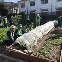 農園での作業に励む「豊中あぐり」の人たち=豊中市で、宇城昇撮影