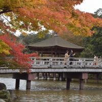 木々が色づき始めた奈良公園の浮見堂=奈良市で、塩路佳子撮影