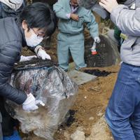 帰還困難区域内にある双葉北小で約35年ぶりにタイムカプセルを掘り出す卒業生たち=福島県双葉町で2019年11月22日午前11時14分、和田大典撮影