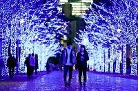Visitors walk along a street lined with zelkova trees illuminated in blue, in Tokyo's Shibuya Ward on Nov. 28, 2019. (Mainichi/Kota Yoshida)