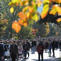 秋の一般公開が始まり、紅葉の乾通りを楽しむ大勢の人たち=皇居で2019年11月30日午前9時6分、手塚耕一郎撮影