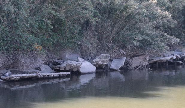 池 の 水 全部 抜く 潮来