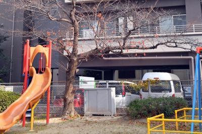 高齢母の遺体が見つかった公園=福岡市西区で2019年12月16日午前11時32分、森園道子撮影