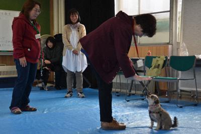 犬のしつけ方教室で、犬に待てをさせる飼い主。左端は講師の片平淳子さん=福島県会津若松市の会津保健福祉事務所で