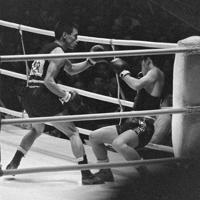 ボクシングバンタム級決勝 2回、桜井孝雄選手(左)のパンチでコーナーに倒れかかる鄭申朝選手(韓国)。1分18秒、RSC(レフェリー・ストップ・コンテスト)で、桜井選手が勝利し、金メダル=赤星忠男撮影