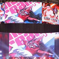 会場の大型スクリーンに映し出された、敗れてマットに横たわる獣神サンダー・ライガー=東京ドームで2020年1月5日、山本晋撮影
