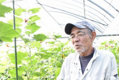 「見た目は不格好だが、どんな料理にも合う。みそ汁に入れるだけでもうまい」と話す横山会長