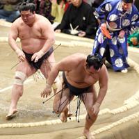 妙義龍に押し出しで敗れ、土俵下に落ちる鶴竜(右)=東京・両国国技館で2020年1月15日、丸山博撮影