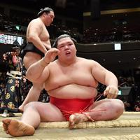竜電(奥)にはたき込みで敗れた阿武咲=東京・両国国技館で2020年1月15日、宮間俊樹撮影