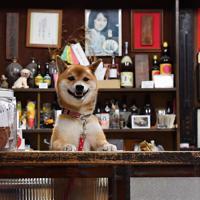 カウンター越しに店内を見渡す福=奈良市で、猪飼健史撮影