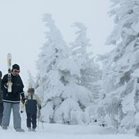 少雪が続き、成長が遅れている蔵王ロープウェイ地蔵山頂駅付近の樹氷。中のアオモリトドマツの形がはっきりと分かる=山形市で2020年1月16日、手塚耕一郎撮影