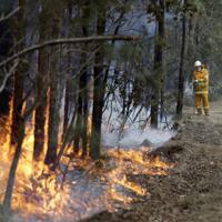 森林火災の消火活動に当たる消防士=豪州東部ニューサウスウェールズ州で8日、AP