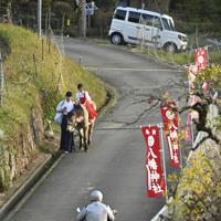 神社へ続く坂道をポクポク歩く=大阪府豊能町で、山田尚弘撮影