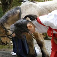 吉川八幡神社の本殿前で、神妙な顔をして一礼=大阪府豊能町で、山田尚弘撮影