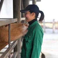 牛舎で飼育されている乳牛を見守る若杉さん。阿蘇キャンパスで実習ができたからこそ、大学生活で「生き物と過ごしてきた実感がある」という=熊本県南阿蘇村で2020年1月8日、津村豊和撮影