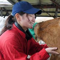 餌を食べる赤牛をなでる飯田さん。飼育や実習を通じて生き物の成長や変化に向き合い、命を感じている=熊本県南阿蘇村で2020年1月8日、津村豊和撮影
