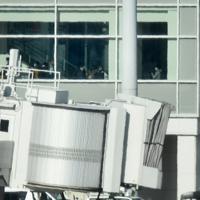 中国・武漢から到着したチャーター機から降りる日本人ら=羽田空港で2020年1月29日午前9時48分、竹内紀臣撮影