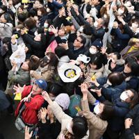 櫛田神社節分大祭の豆を取ろうと手を伸ばす大勢の参拝客=福岡市博多区で2020年2月3日午前11時8分、上入来尚撮影