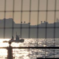 大黒ふ頭沖に停泊を続けるクルーズ船「ダイヤモンド・プリンセス」=横浜市鶴見区で2020年2月5日午前7時32分、喜屋武真之介撮影