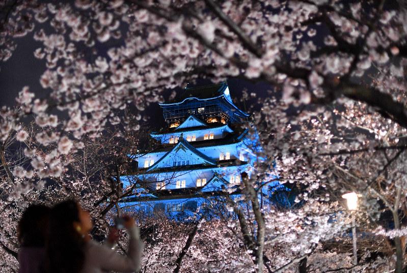 「世界自閉症啓発デー」に合わせて青色にライトアップされた大阪城=2019年4月2日、久保玲撮影