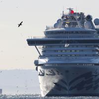 8日に一度港を離れ、再び着岸するクルーズ船「ダイヤモンド・プリンセス」=横浜市鶴見区の大黒ふ頭で2020年2月9日午前8時12分、吉田航太撮影