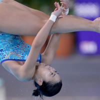 女子3メートル板飛び込み決勝、2位となった榎本遼香の1回目の演技=東京辰巳国際水泳場で2020年2月9日、宮武祐希撮影