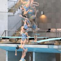 女子3メートル板飛び込み決勝、1位となった三上紗也可の5回目の演技の連続合成写真(上から下へ)=東京辰巳国際水泳場で2020年2月9日、宮武祐希撮影