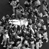 1993年度日本シリーズで西武ライオンズを破って、野村克也監督を胴上げするヤクルトの選手たち。野村監督は南海時代を含め3度目のシリーズ出場で初の宿願を果たした=埼玉・西武球場で1993年11月1日、本社ヘリから