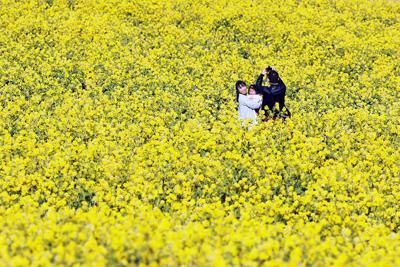 早咲きの菜の花畑で写真撮影を楽しむ親子=兵庫県淡路市で2020年2月11日、小出洋平撮影