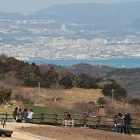 神戸市内を望む「あわじ花さじき」=兵庫県淡路市で2020年2月11日、小出洋平撮影