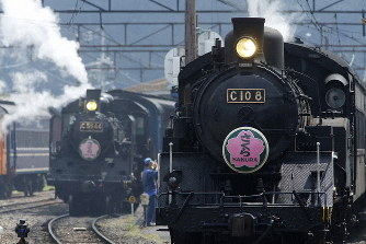 大井川鉄道は走行できる蒸気機関車を4両も保有している=静岡県の新金谷駅で2017年4月5日、金盛正樹撮影