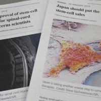 ステミラックの試験や効果に疑問を示す英科学誌ネイチャーの記事