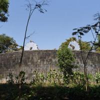遺体が置かれる「沈黙の塔」。太陽光を遺体に当てるため、反射パネルが2枚設置されていた=インド西部グジャラート州ナブサリで2020年1月26日、松井聡撮影(特別な許可を得て撮影しています)