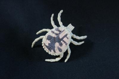 ニュージーランドの動物園で売っていたマダニのおもちゃ。ピンを接着して、ピンバッジとして愛用している=五箇公一さん提供