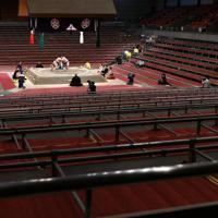 新型コロナウイルスの感染拡大を受け史上初めて無観客で開催された大相撲春場所で、取組をする徳勝龍(左)と正代=エディオンアリーナ大阪で2020年3月8日午後5時29分、猪飼健史撮影