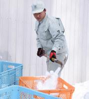 雪室を作る屋外実習でコンテナに雪を詰める帯広農の水上流暢=北海道帯広市で、高橋由衣撮影