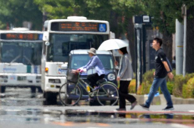 福岡 市 過去 の 天気