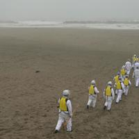 雨が降る中、行方不明者の捜索のため海辺へ向かう警察官ら=仙台市若林区荒浜で2020年3月10日午前11時5分、北山夏帆撮影