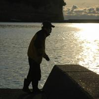 兄を捜して、大津漁港の突堤から身を乗り出す男性=北茨城市の大津漁港で2011年3月26日午前6時28分ごろ、原田啓之撮影