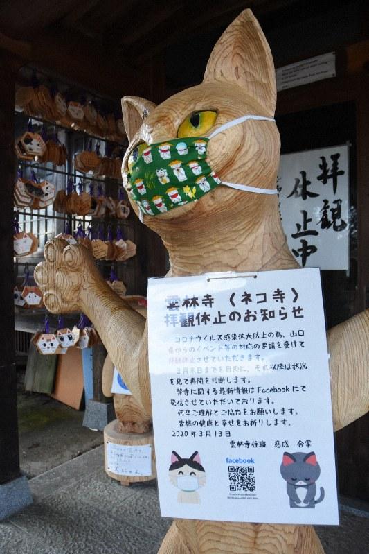 ウイルス 新型 猫 コロナ