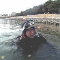 お台場海浜公園近くの海で水中生物を探す須賀次郎さん=2019年2月、須賀さん提供