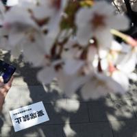 「宴席禁止」の張り紙がある中、桜を楽しむ人たち=東京都台東区の上野公園で2020年3月21日午後1時35分、小川昌宏撮影