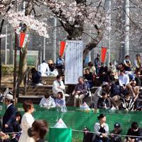 桜を楽しむ人たちの中に設置された新型コロナウイルスに関する看板=東京都台東区の上野公園で2020年3月21日午後1時49分、小川昌宏撮影