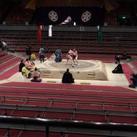 無観客の中行われた白鵬と鶴竜の両横綱による千秋楽結びの一番=エディオンアリーナ大阪で2020年3月22日、猪飼健史撮影