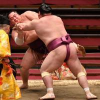 遠藤(左)が押し出しで宝富士に敗れる=エディオンアリーナ大阪で2020年3月22日、木葉健二撮影