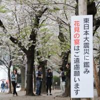 花見の宴の自粛を促す看板が掲げられた靖国神社=東京都千代田区で2011年4月9日午前10時5分、須賀川理撮影